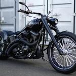 Harley Davidson 07 FXSTB 300 Fat Tire Custom : GILDA