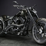 2009 TWIN CAM ROCKER CUSTOM : DRAGON FLY